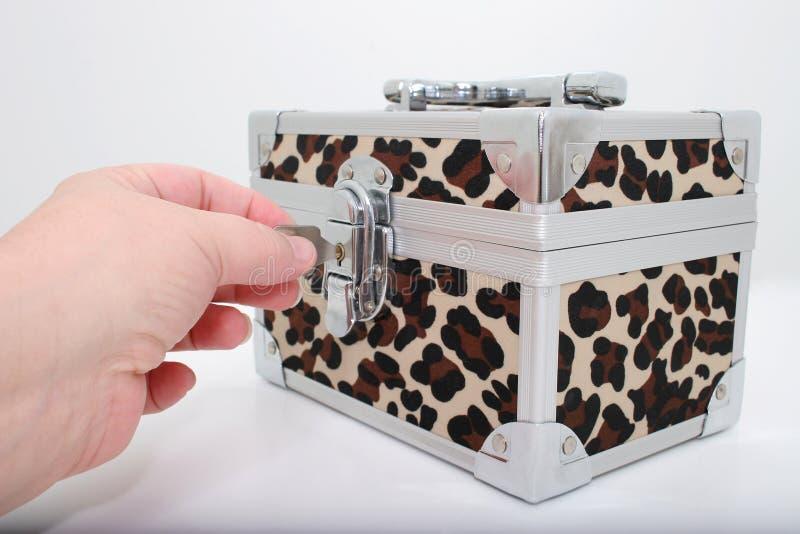 Caixa animal do fechamento da cópia imagem de stock royalty free