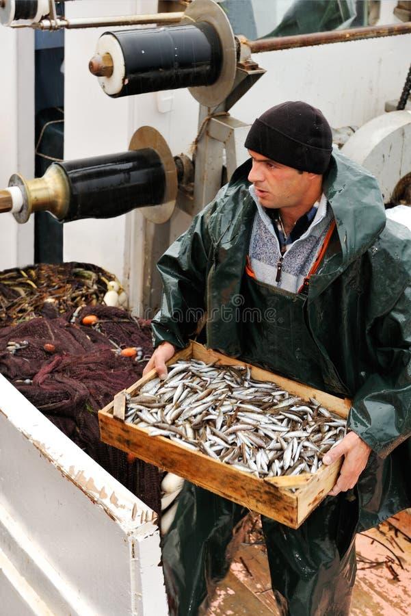 Caixa carreg do pescador com peixes fotos de stock