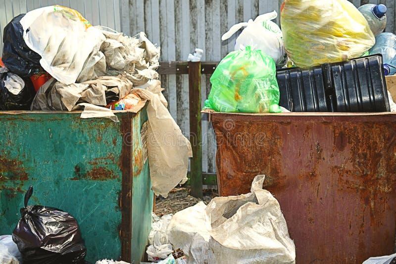 Caixa de maca completamente do lixo no conceito da floresta do problema da ecologia fotografia de stock