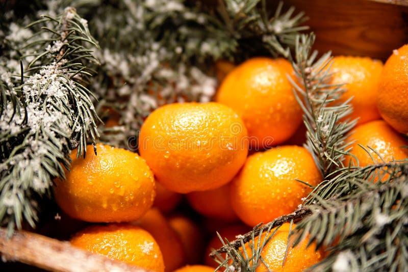 Caixa de madeira com tangerinas fotografia de stock royalty free