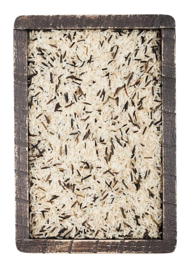Caixa de madeira da grão longa basmati orgânica crua e arroz selvagem no fundo branco Alimento saudável imagens de stock