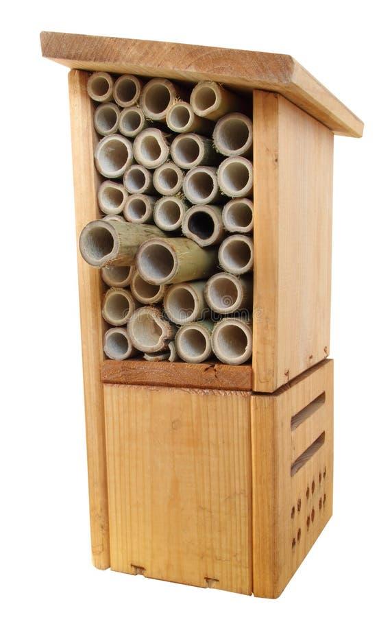 Caixa de madeira do erro do inseto foto de stock
