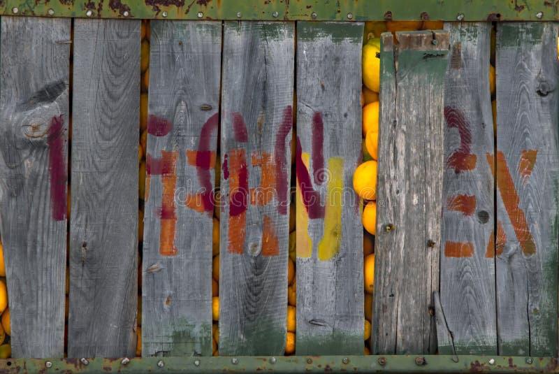Caixa de madeira velha grande enchida com as laranjas das citrinas no armazém da fábrica ou da planta imagem de stock royalty free
