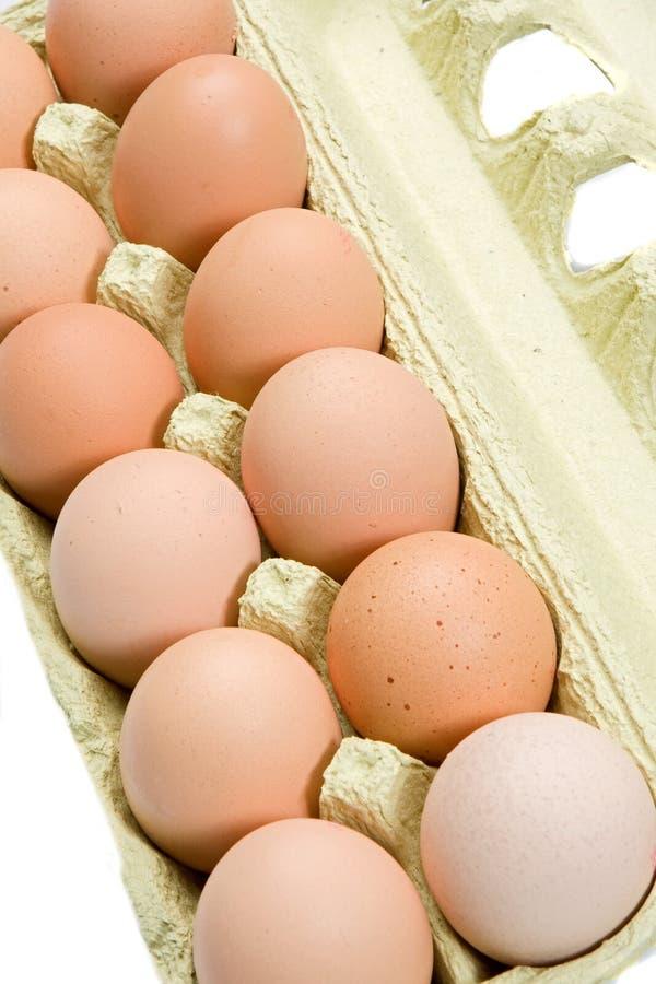 Caixa de ovos imagens de stock