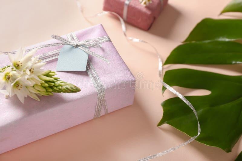 Caixa de presente bonita com folha e a flor tropicais no fundo da cor foto de stock royalty free