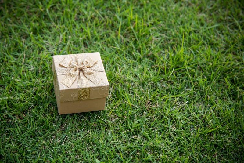 Caixa de presente dourada do Natal na grama verde foto de stock