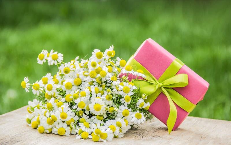 Caixa de presente e ramalhete dos camomiles Flores e presente do verão Conceito romântico fotos de stock