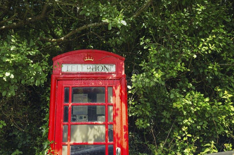 Caixa de telefone vermelha dentro dos ramos de árvore verdes fotos de stock royalty free