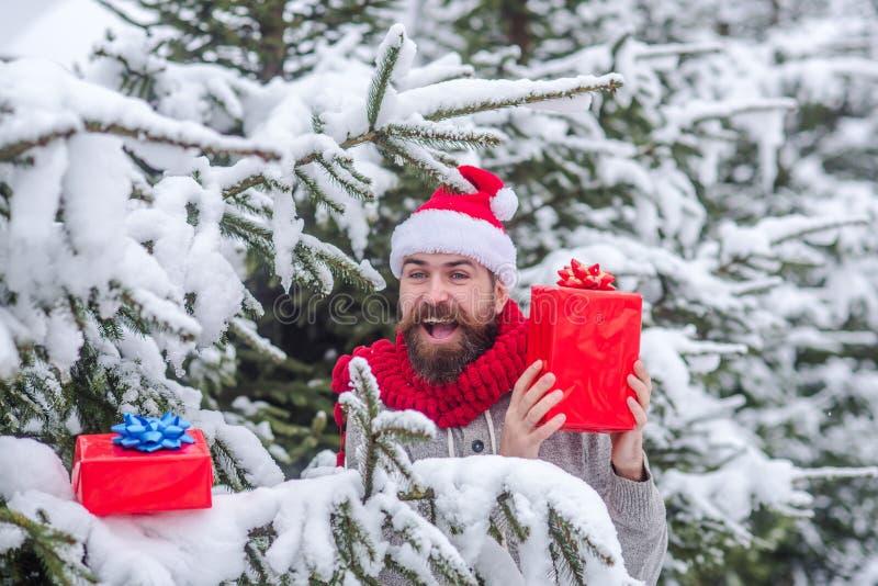 Caixa feliz do presente da posse do homem do Natal na floresta nevado do inverno foto de stock
