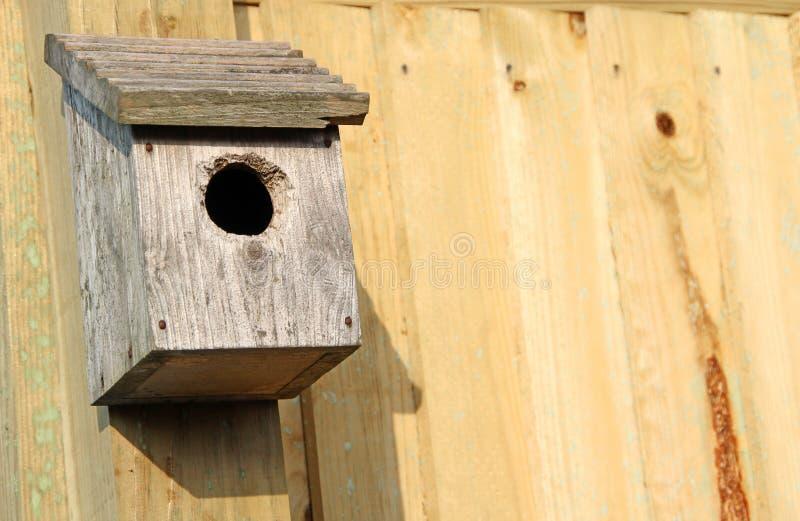 Caixa-ninha do pássaro fotos de stock royalty free