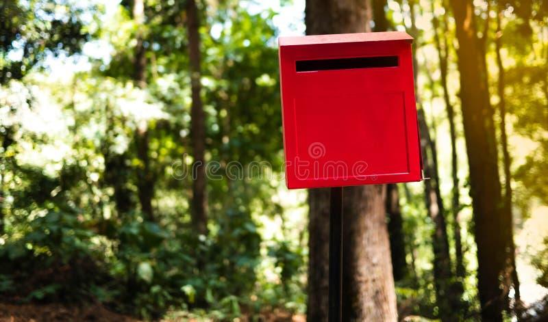 Caixa postal clássica na floresta do pinho em Chiang Mai, Tailândia imagem de stock royalty free