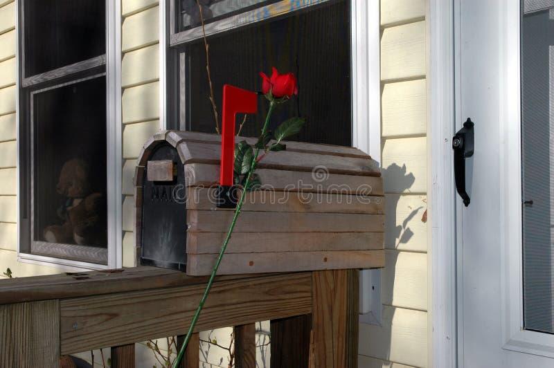 Caixa postal romântica com Rosa fotos de stock
