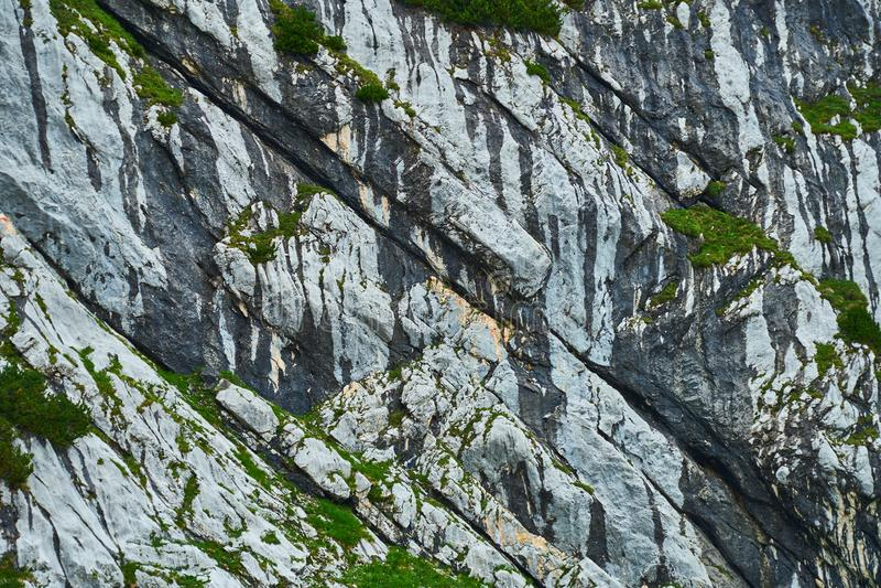 Caixas de calcário estratificadas paralelas de cor clara com precipitados secundários de óxido de manganês preto nas articulações imagens de stock royalty free