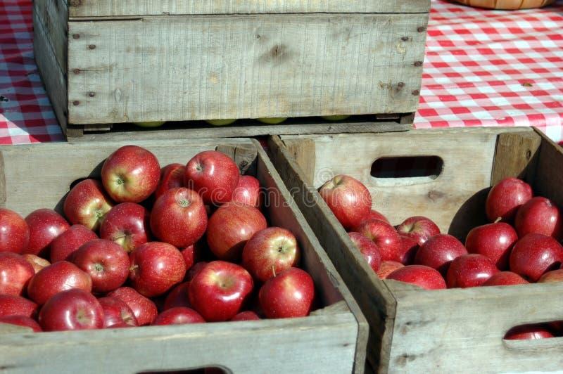 Caixas de maçãs vermelhas imagem de stock royalty free
