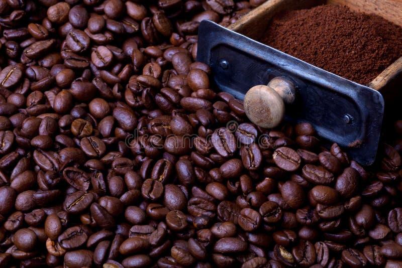 Cajón de la amoladora de café por completo del polvo del caffee fotos de archivo