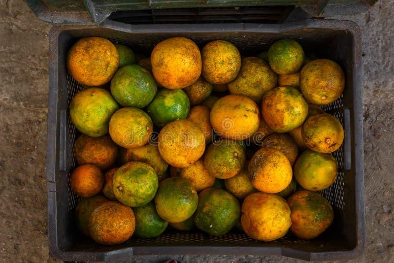 Cajón de naranjas frescas en una calle en Cuba imagen de archivo