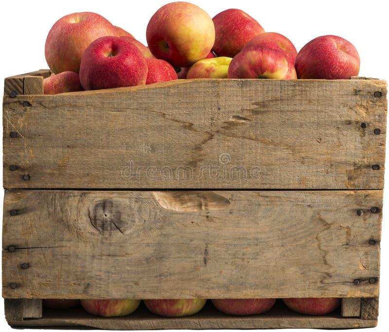 Cajón por completo de manzanas foto de archivo