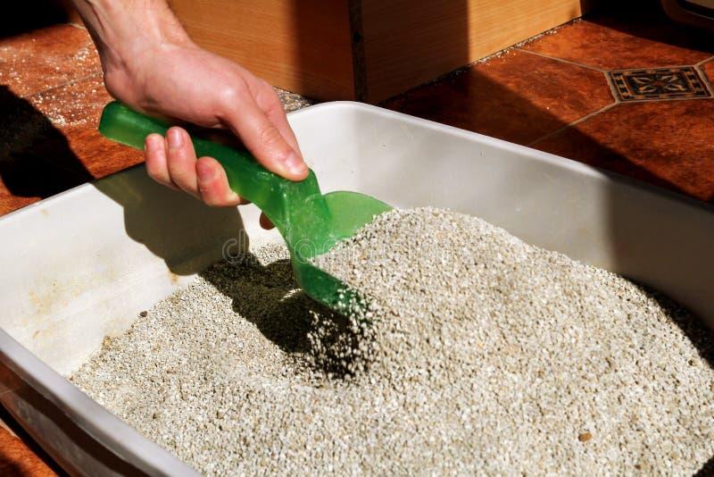 Caja de arena para gatos de la limpieza foto de archivo libre de regalías