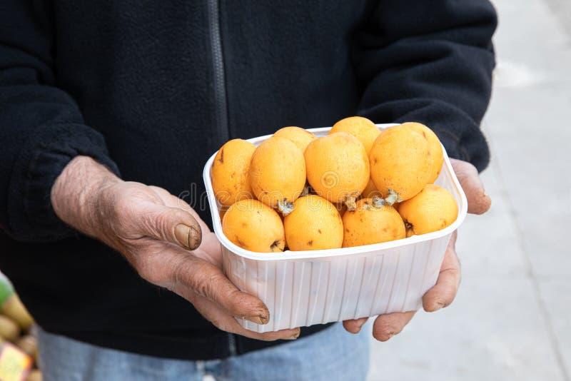 Caja de las frutas loquat o del japonica maduro del Eriobotrya en las manos del vendedor de la tienda vegetal griega de la fruta  imagen de archivo libre de regalías