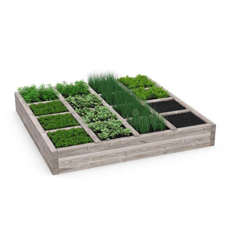 Caja de madera con un jardín joven en blanco ilustración 3D stock de ilustración