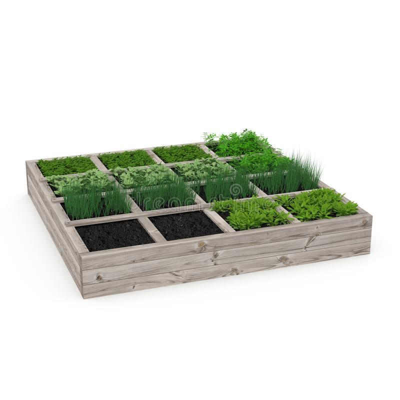 Caja de madera con un jardín joven en blanco ilustración 3D ilustración del vector
