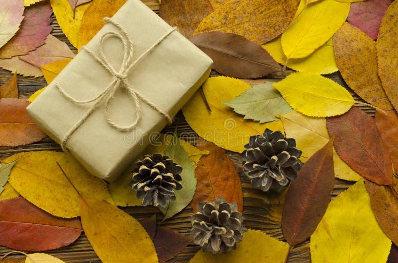 Caja de regalo en fondo coloreado de las hojas de otoño fotografía de archivo libre de regalías