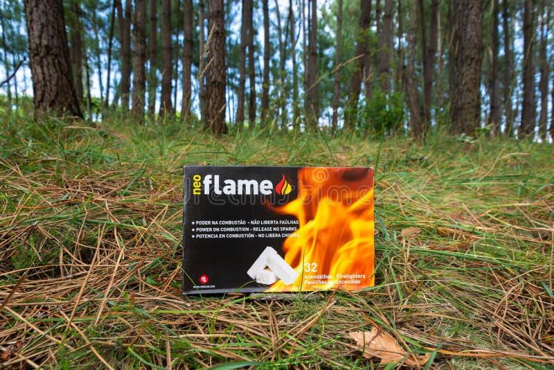 Caja del arrancador de fuego en un bosque del árbol de pino fotografía de archivo
