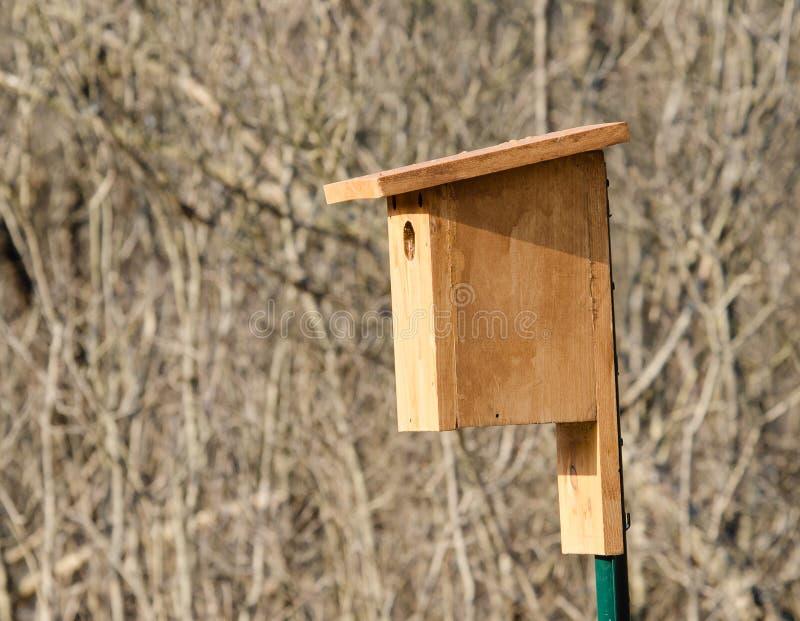Caja del Bluebird fotos de archivo