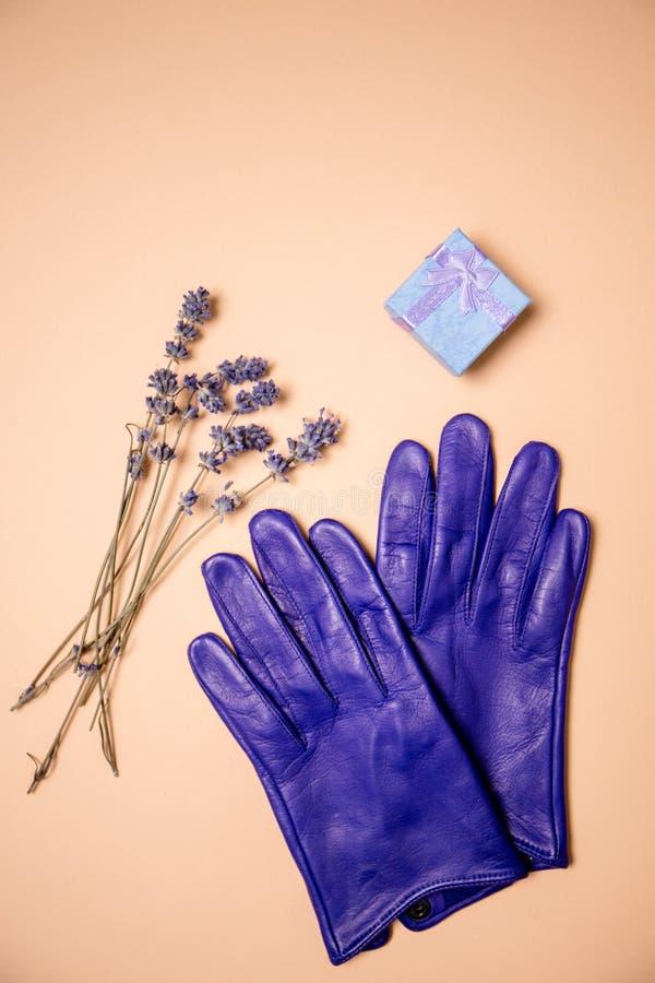 Caja y guantes de regalo foto de archivo