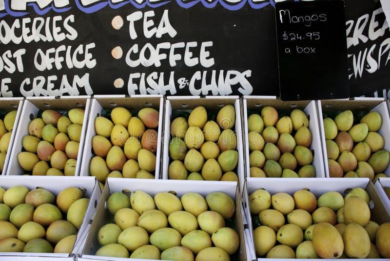 Cajas de mangos para la venta en Australia imagen de archivo libre de regalías