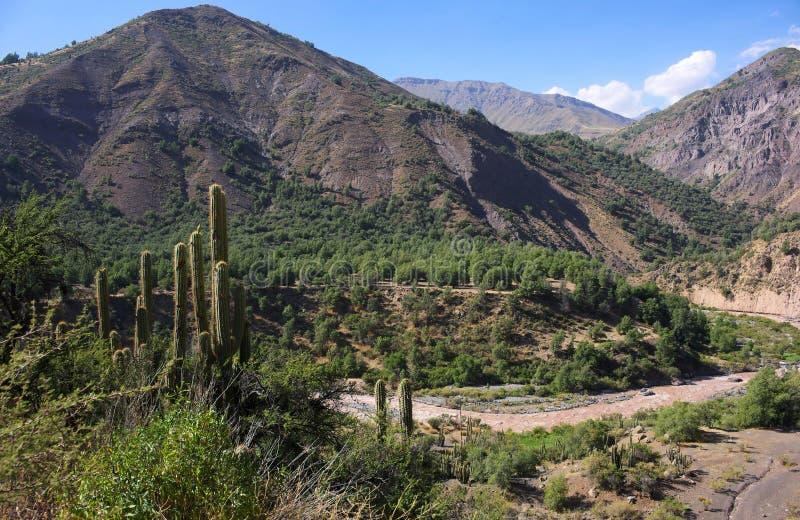 Cajon del Maipo - barranco - XIV - Chile imagen de archivo