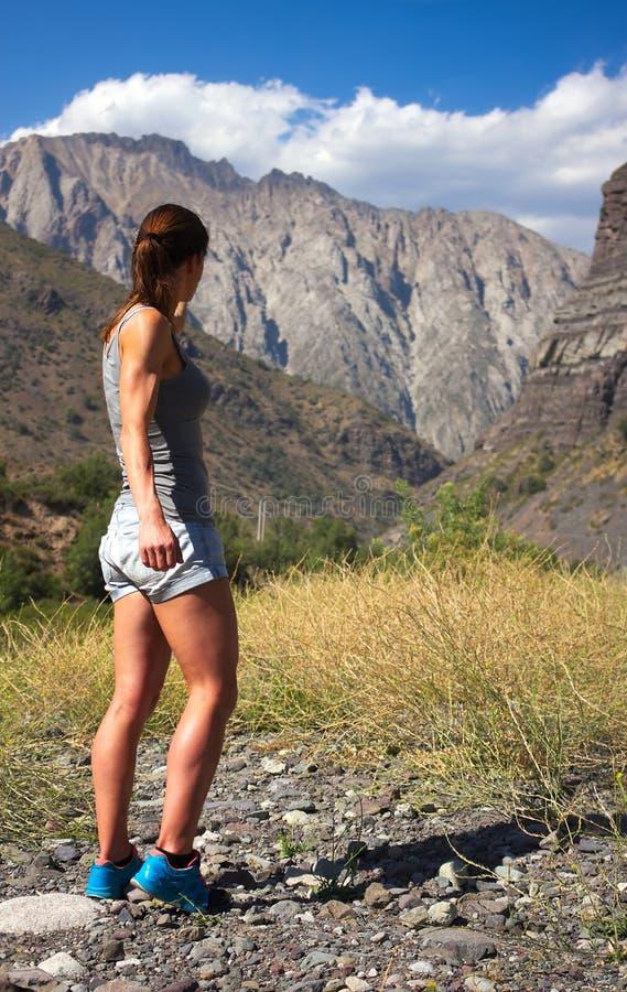 Cajon Del Maipo Ja - widok na jarze - obraz royalty free