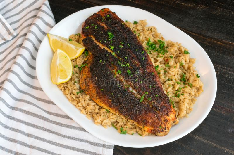 Cajun-style Blackened Red Snapper on Dirty Rice stock image