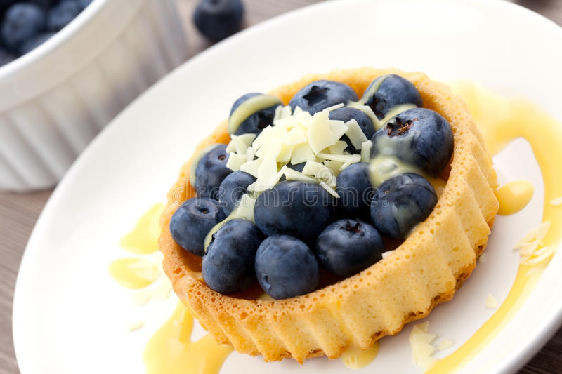 Cake With Bilberry Stock Photography