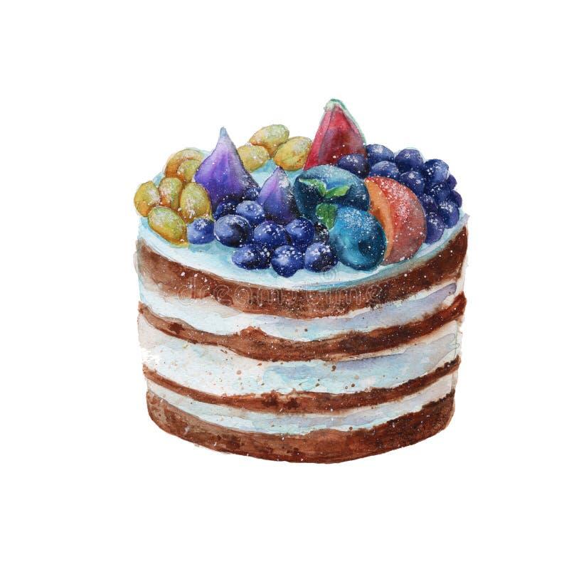 Cake in een rustieke stijl met fruit watercolor stock illustratie