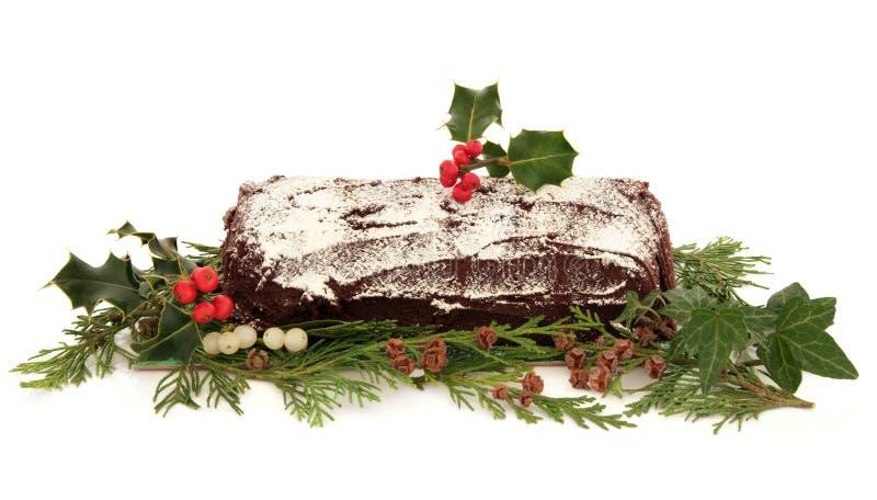 Cake för jul för Yule journal royaltyfri fotografi