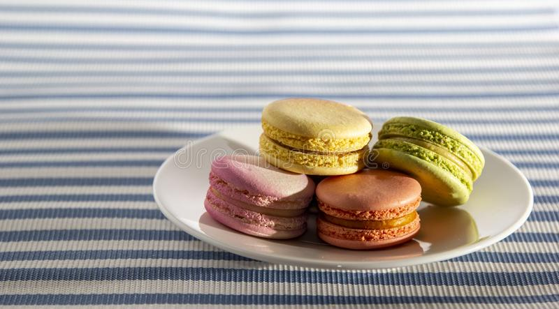 Cake french macaroons, sweet colorful macarons on plate on white and blue striped background royalty free stock image