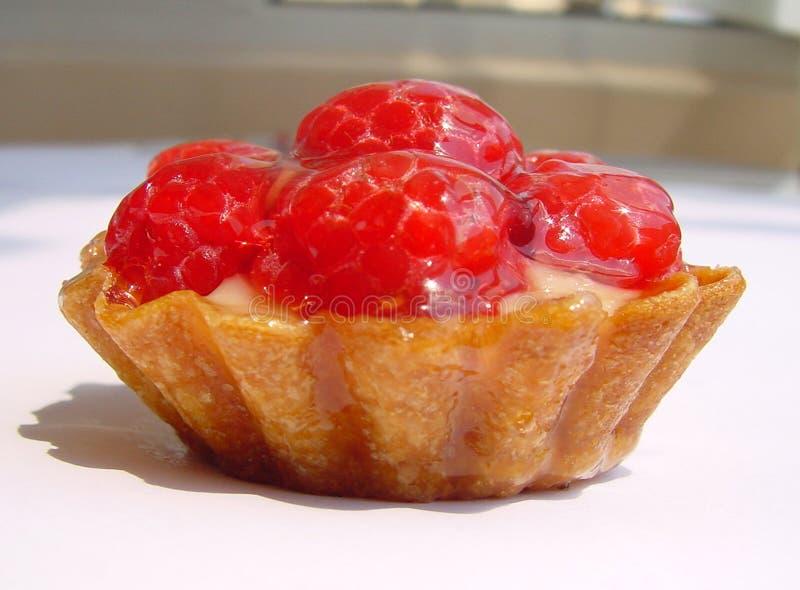 cake fruit στοκ εικόνες με δικαίωμα ελεύθερης χρήσης