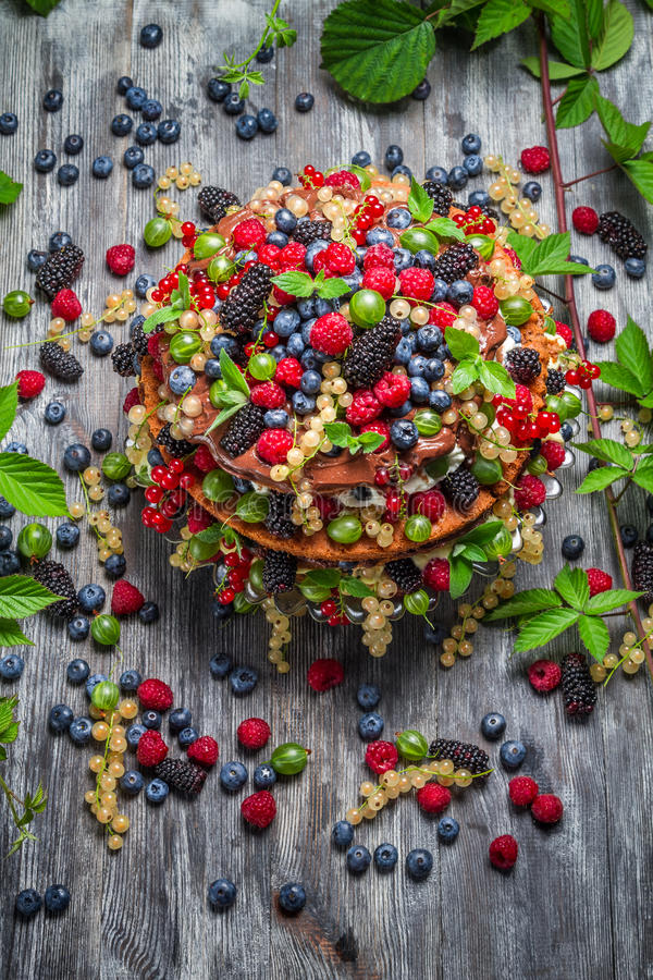 Cake made of wild berries stock photography
