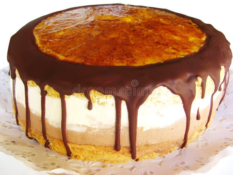 Cake med chokladisläggning royaltyfri foto