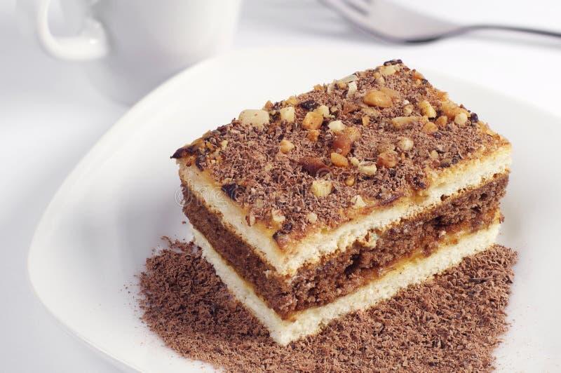 Cake met chocolade royalty-vrije stock fotografie