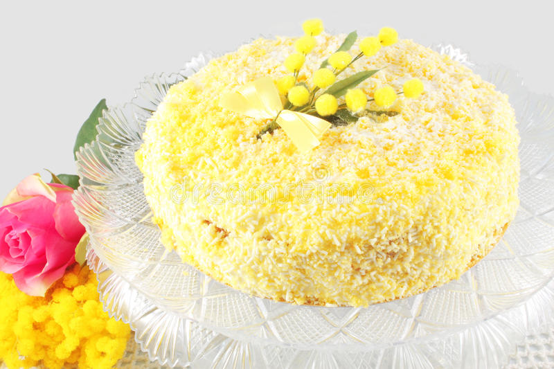 Cake Mimosa. Mimosa and rose stock photography