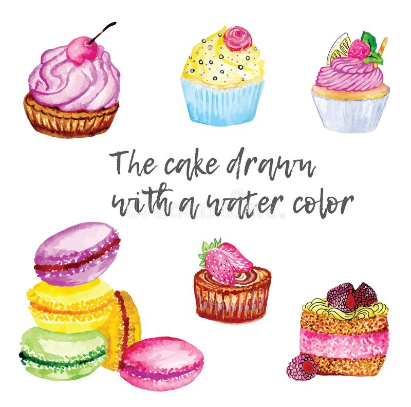 Cake and muffins. Drawn with a water color vector illustration