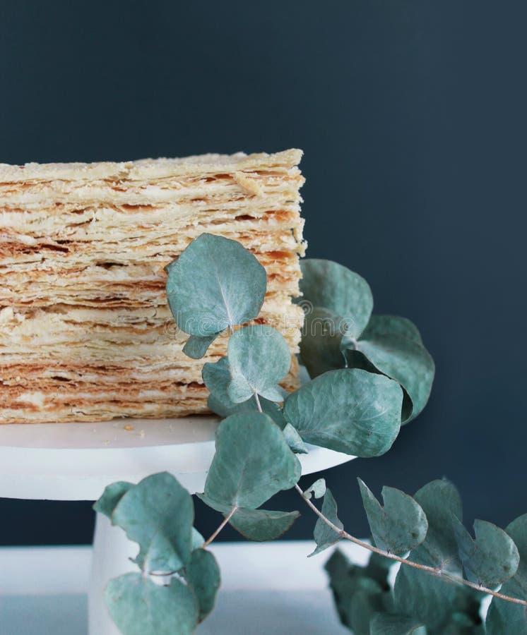 Cake Napoleon I doorbladerende eucalyptus royalty-vrije stock afbeelding