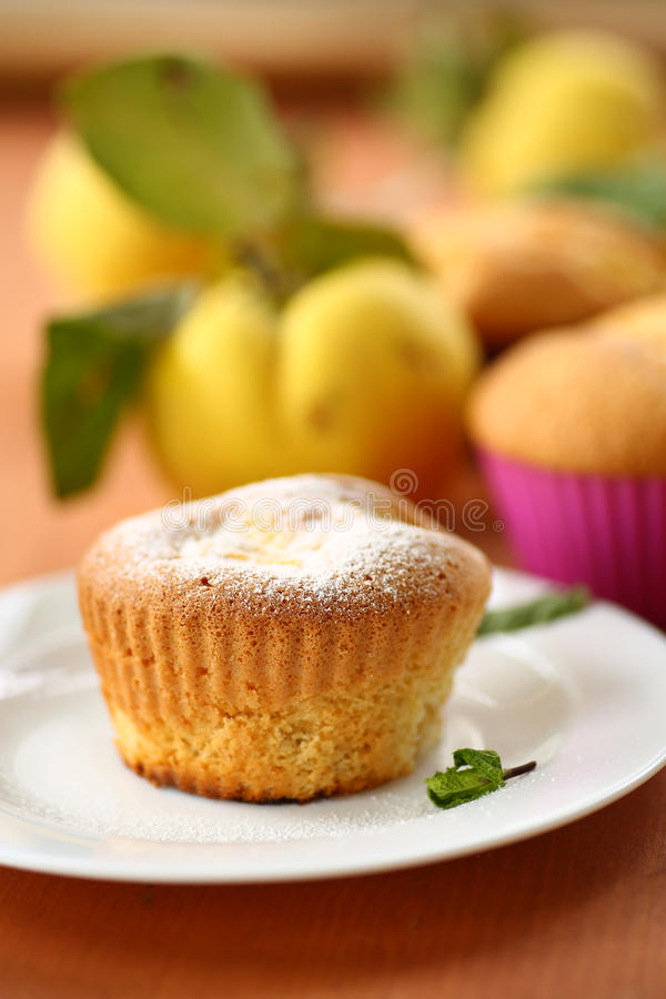 Download Cake with quince stock photo. Image of delicious, cake - 34171264