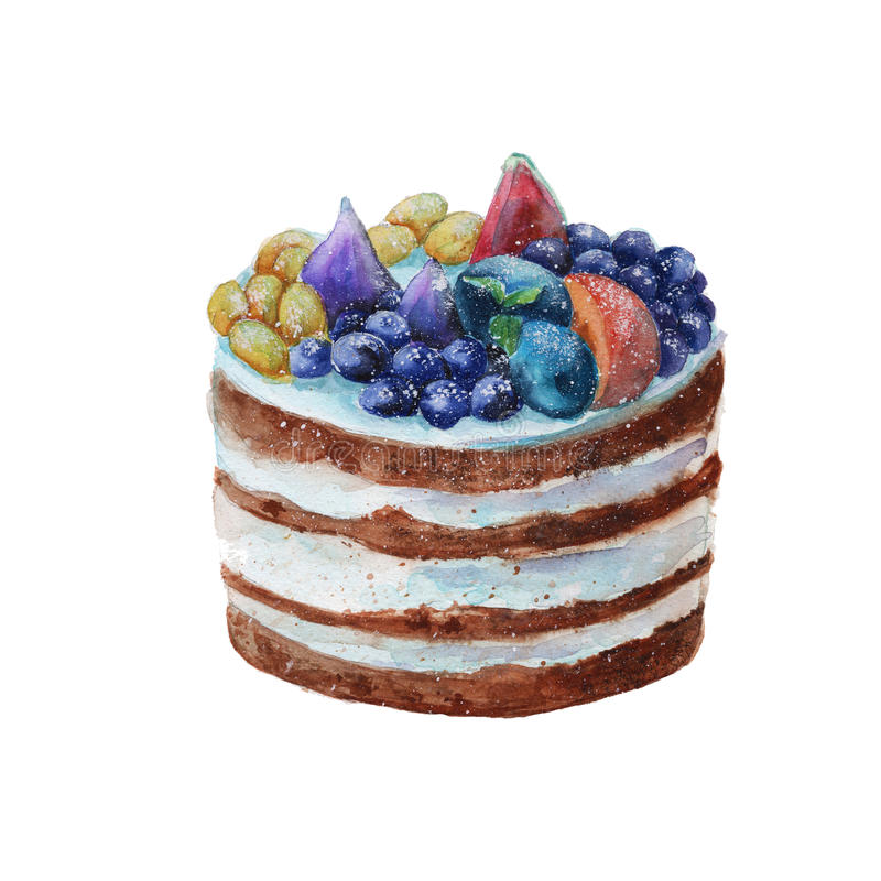 Cake in a rustic style with fruit. . watercolor stock illustration