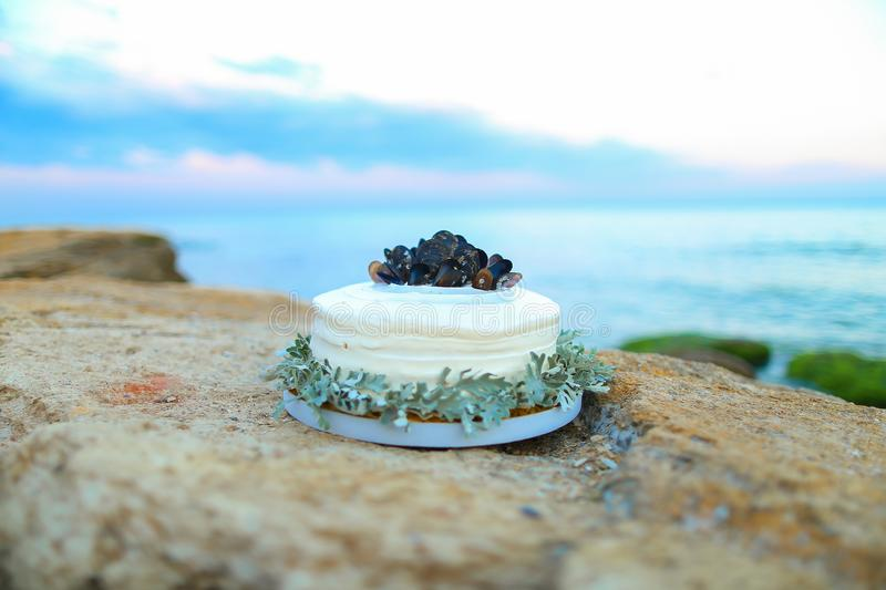 Cake on stone with mountains and sea in background, decorated in oceanic theme with seashells. royalty free stock photos
