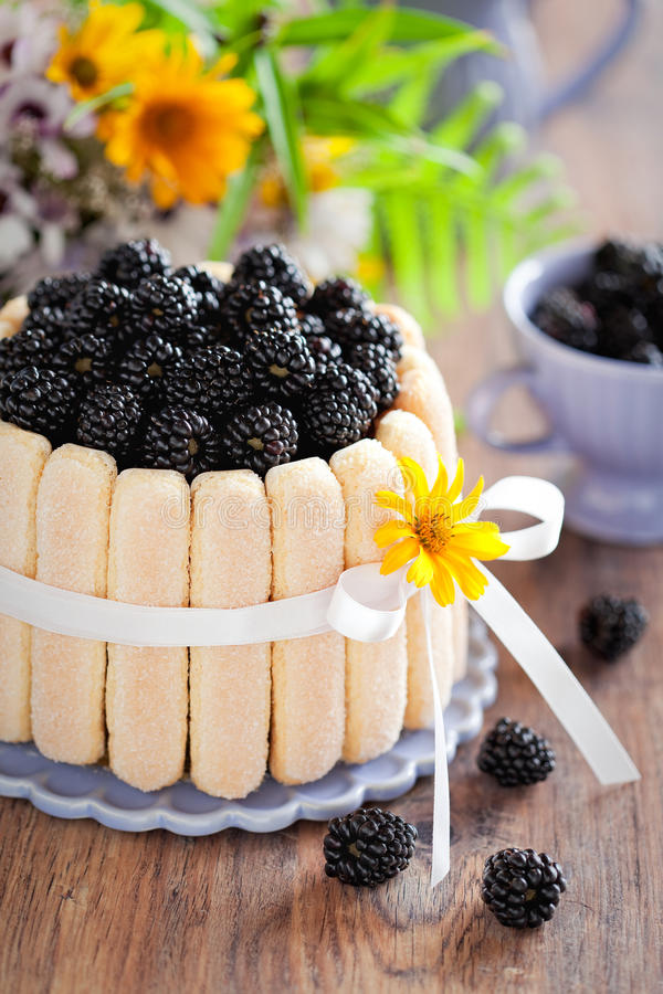 Free Cake With Blackberrys Royalty Free Stock Images - 25927159