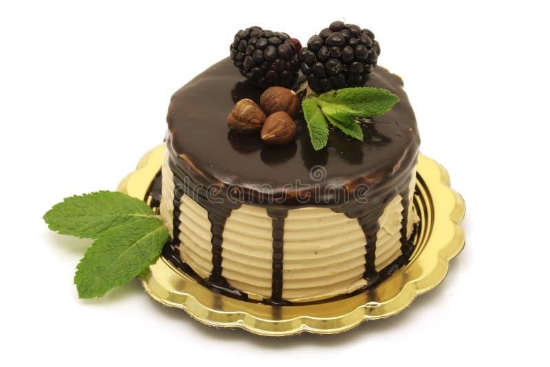 cakechokladhasselnöt arkivbilder