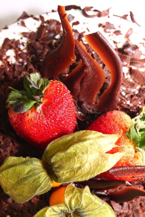 cakechokladjordgubbe fotografering för bildbyråer